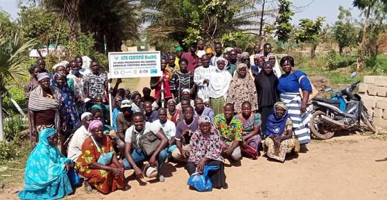 Agroécologie urbaine et commercialisation: Pour une transition agroécologique pérenne des coopératives maraichères de Ouagadougou