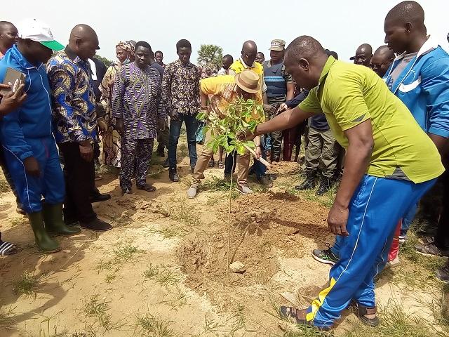 Réhabilitation de la ceinture verte de Ouagadougou : 1200 plants mis en terre