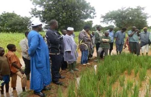 Abdoulaye Combary au Centre Nord: Le pouls de la campagne sous la pluie