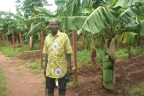 Production agricole: De l'hévéa «made in Burkina»
