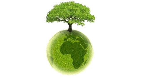 Actu vert! Sandy relance le débat sur les changements climatiques
