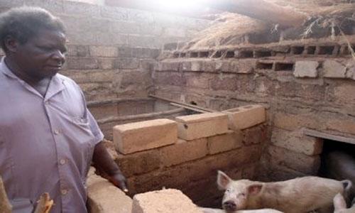 Ex-travailleur de Faso Fani: De l'encre à l'enclos
