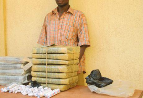 LUTTE CONTRE LE TRAFIC DE DROGUES À BOBO-DIOULASSO:  Un grossiste arrêté en possession de 20 kilogrammes de «Yamba»