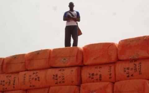 Sofitex /Dédougou: Faute d'embauche, un travailleur tente de s'immoler