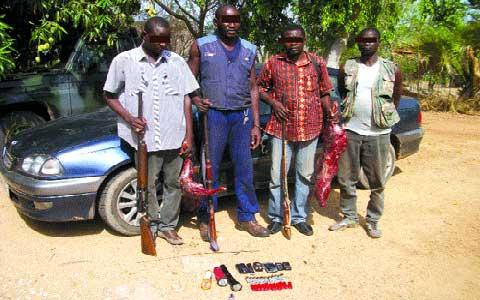 CHASSE DANS LA RÉGION DE L'EST: Quatre braconniers dans les filets de la gendarmerie de Pama