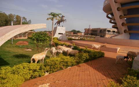 Bobo-Dioulasso: Il conduit ces animaux dans le monument du cinquantenaire