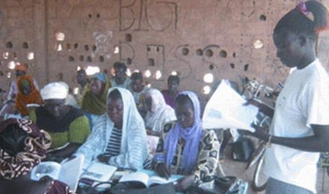 Alphabétisation/Formation: Une voie d'accès au développement en Afrique