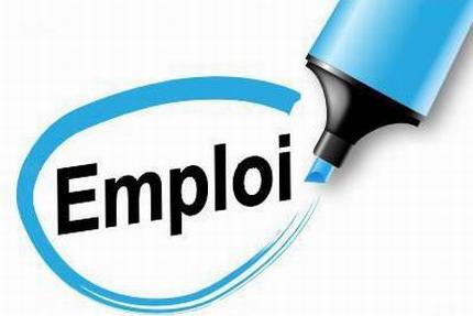 Avis de recrutement: ONG recherche un gestionnaire-comptable