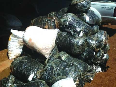 Commune de Ouessa: Plus de 2 tonnes de cyanure saisies