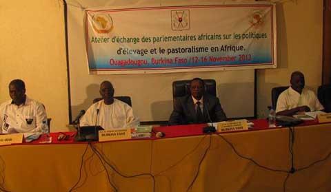 Développement de l'élevage en Afrique: La transhumance et le pastoralisme au centre d'échanges entre parlementaires du continent