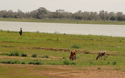 Barrage N°2 de Ouagadougou: un corps sans vie repêché