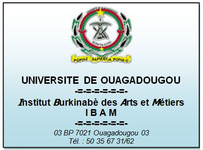 Test d'entrée en 1ère année à l'Institut Burkinabé des Arts et Métiers (IBAM), session 2014