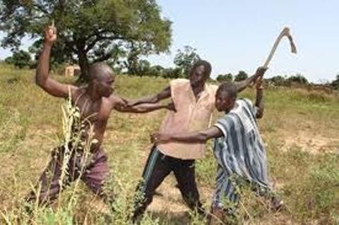 Le  Plateau du week-end…: La récurrence des conflits  entre éleveurs et agriculteurs