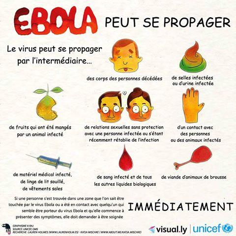 Lutte contre Ebola: le Ministère de la santé appelle à «limiter les salutations en se serrant les mains et les accolades»