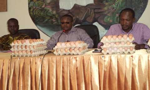 Banfora: Les acteurs de la filière avicole dénoncent une concurrence déloyale