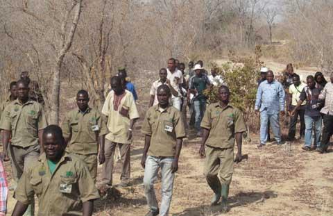 Gestion de forêts communales: Qu'en est-il  dans un contexte de délégations spéciales?