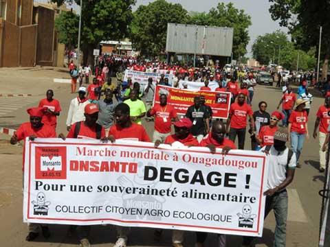 Marche contre Monsanto: les Burkinabè ne veulent plus des OGM
