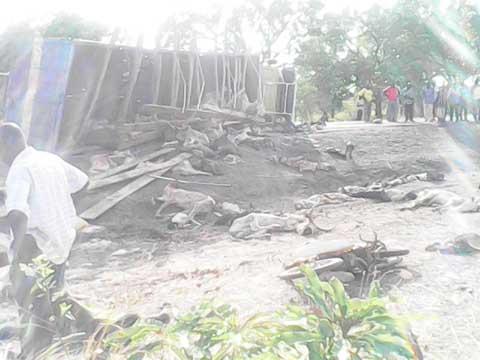 Accident sur l'axe Ouaga- Saponé – Léo: Le MPP appelle au respect de l'interdiction du transport mixte