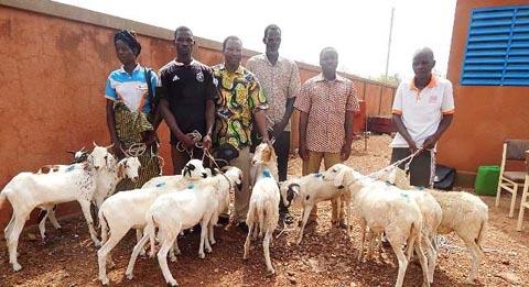 Lutte contre la pauvreté dans le Mouhoun: GRET offre 22 kits d'élevage à des ménages