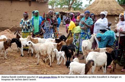 Zemstaaba de Zéguédéghin Peulh a franchi une autre étape de l'épargne