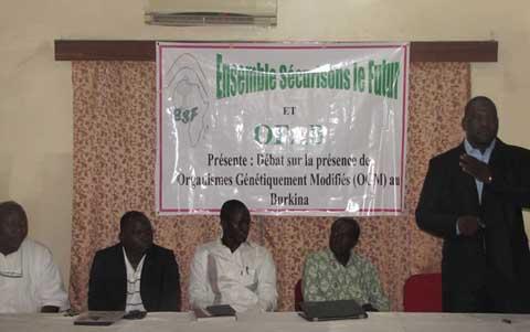 Biotechnologies modernes: Le coton BT, seule culture OGM commercialisée au Burkina