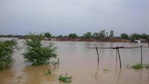 La grosse pluie qui s'est abattue sur Ouagadougou très tôt ce dimanche matin a provoqué des inondations dans certaines parties de la ville. A Bissighin, à la périphérie Nord de la capitale, on enregistre depuis le milieu de la matinée, l'effondrement de plusieurs habitations précaires. Nous y reviendrons.