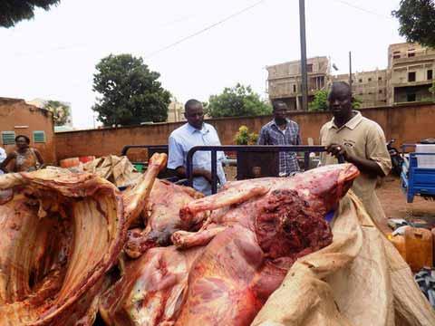 Abattage clandestin d'animaux: La viande de la mort!