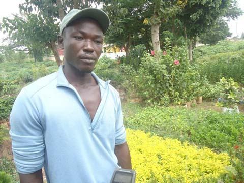 Saison pluvieuse: Période propice aux bonnes affaires chez les pépiniéristes