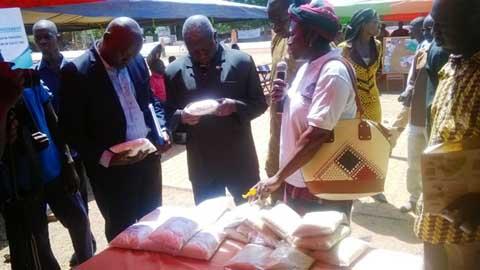 JProNut-Fada 2015: Sous le sceau d'acteurs déterminés à vaincre la malnutrition et la faim dans la localité.
