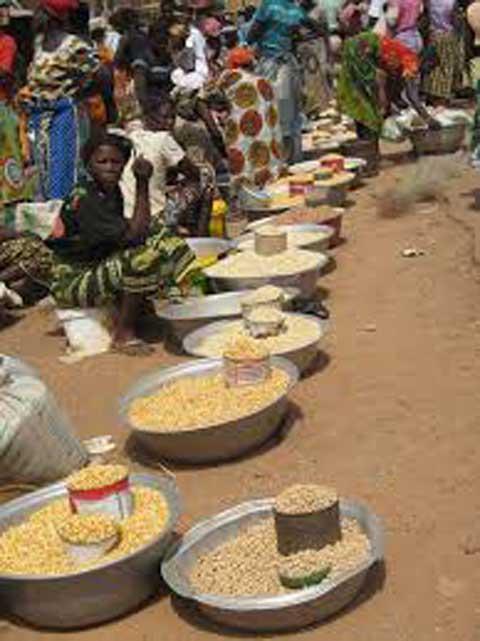Lutte contre l'insécurité alimentaire: Des partenaires soutiennent les efforts du gouvernement