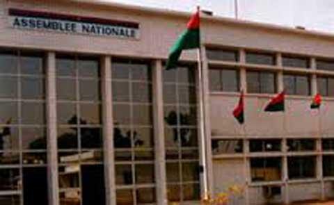 Place des Parlements dans les réformes démocratiques africaines