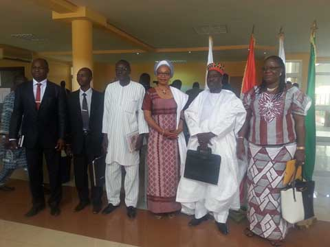 Assemblée nationale: Sept suppléants font leur entrée
