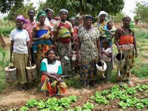 Journée internationale de la femme: Pour une émergence de l'entrepreneuriat agricole au Burkina Faso