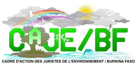 Destruction d'arbres pour travaux d'aménagement: Des juristes de l'environnement se plaignent au ministre de l'environnement