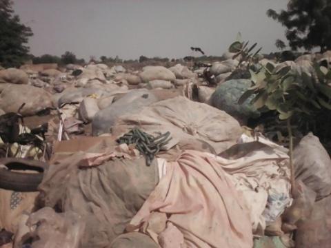 Opération «zéro sachet plastique»: Un projet en  hibernation