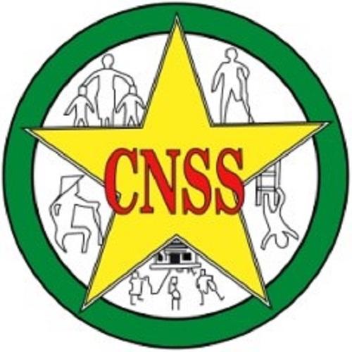 Avis de Manifestation d'Intérêt N°2016/0.30/CNSS FINANCEMENT: Budget CNSS Gestion 2016