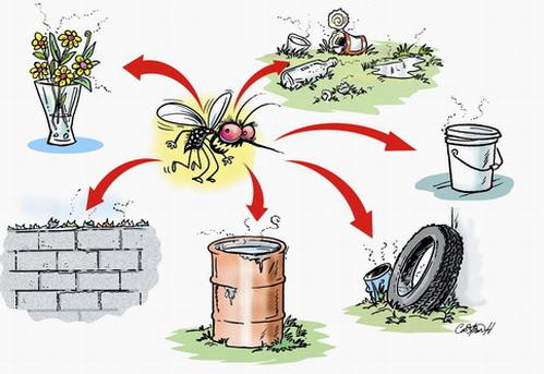 Epidémie de dengue: Le Réseau d'Accès aux Médicaments Essentiels (RAME) s'inquiète des dispositions prises par les autorités sanitaires
