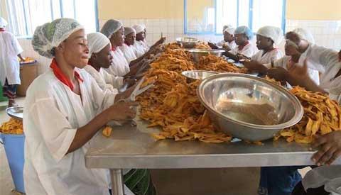 Campagne 2016 de mangues à Bobo-Dioulasso: L'APROMAB fait son bilan