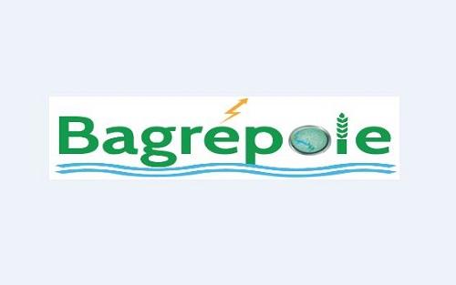 Avis d'information du public sur les études environnementales et sociales de Bagrépôle