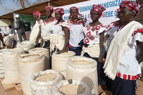 Clôture de l'année internationale des légumineuses: Kongoussi a tenu son pari