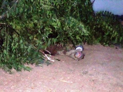 Région du sud-ouest: Le corps  sans vie d'un acheteur  d'or retrouvé dans les eaux du barrage de Bapla