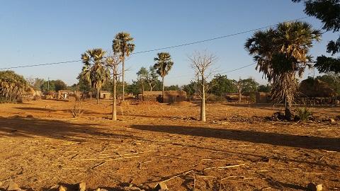 Madouba: Les contraintes de développement d'une commune rurale expliquées par le maire et son premier adjoint