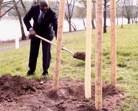 L'arbre de l'intégrité burkinabè désormais au bord du Rhin en Allemagne