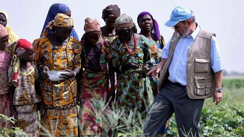 Bassin du Lac Tchad: Poser les bases de la paix et la consolider