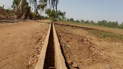 Terre aménagée et abandonnée au bord du fleuve Mouhoun: La vie reprend sur le site