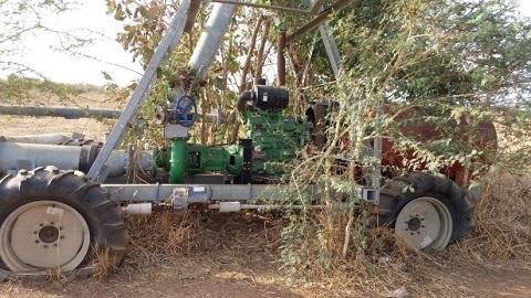 Périmètre de Sono: Les milliards de l'Etat burkinabè envahis par des épines