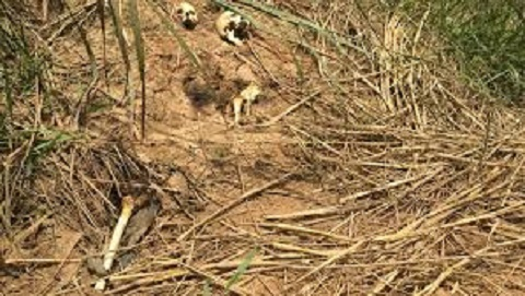 Crise en RDC: L'église catholique rend public son rapport sur la tuerie dans le Kasaï
