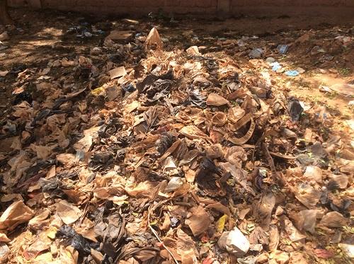 Journée mondiale sans sachets plastiques: Ce qu'en pensent des  Burkinabè
