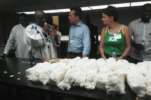 Bobo-Dioulasso: L'ambassadeur de France au Burkina Faso, Xavier Lapeyre De Cabanes a visité le complexe Bobo III de la SOFITEX