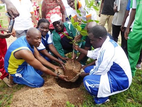 Cité de Bassinko: La BHBF plante  500 arbres